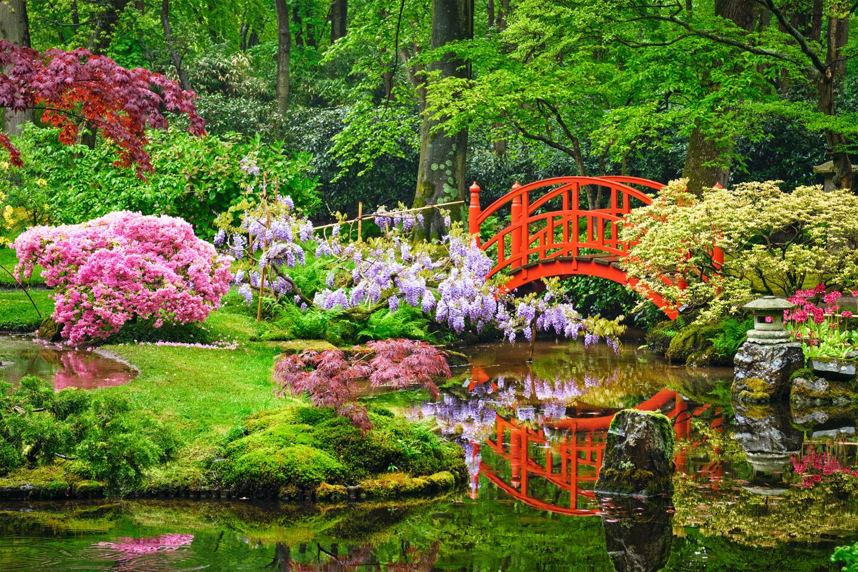 bénéfice-jardin-japonais